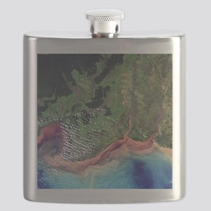 River deltas in Borneo - Flask
