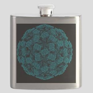 Norwalk virus particle - Flask
