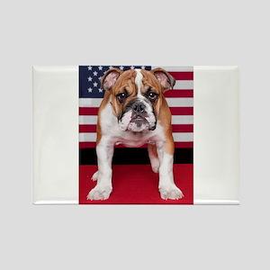 All American Bulldog Rectangle Magnet
