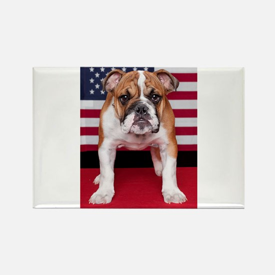 All American Bulldog Rectangle Magnet