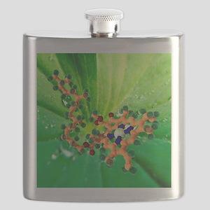Chlorophyll molecule - Flask
