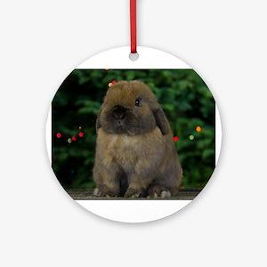 Christmas Bunny Ornament (Round)