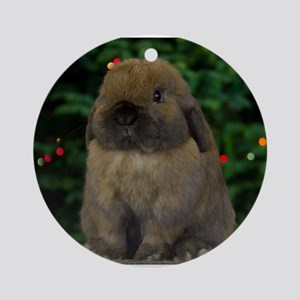 Christmas Bunny Ornament (Round)