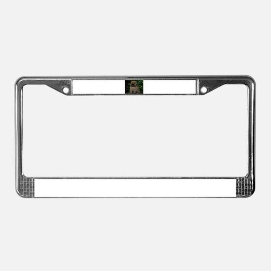 Christmas Bunny License Plate Frame