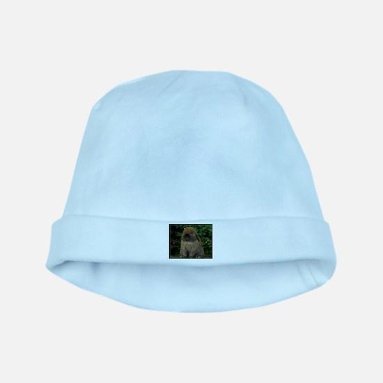 Christmas Bunny baby hat