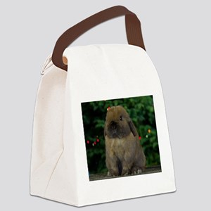 Christmas Bunny Canvas Lunch Bag