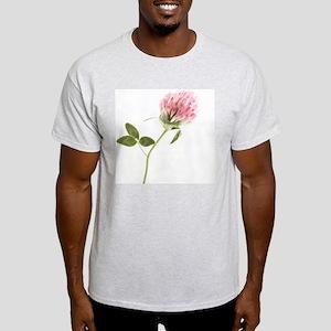 Red clover (Trifolium pratense) - Light T-Shirt