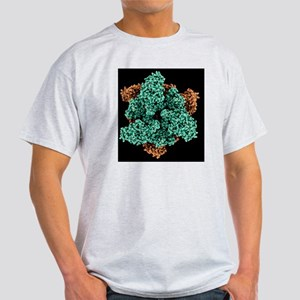 ATP sulfurylase molecule - Light T-Shirt