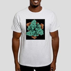 ATP sulfurylase molecule - Light T-Shirt