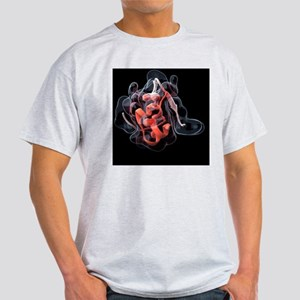 Insulin molecule - Light T-Shirt