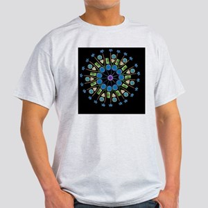 Diatom assortment, SEMs - Light T-Shirt