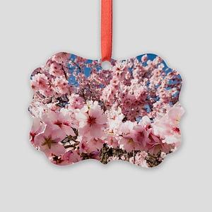 Almond (Prunus dulcis) - Picture Ornament