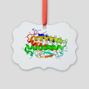 Thrombopoietin hormone molecule - Picture Ornament