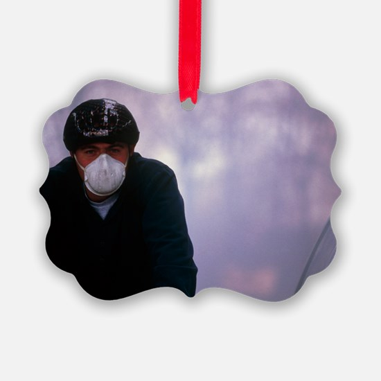 Air pollution - Ornament
