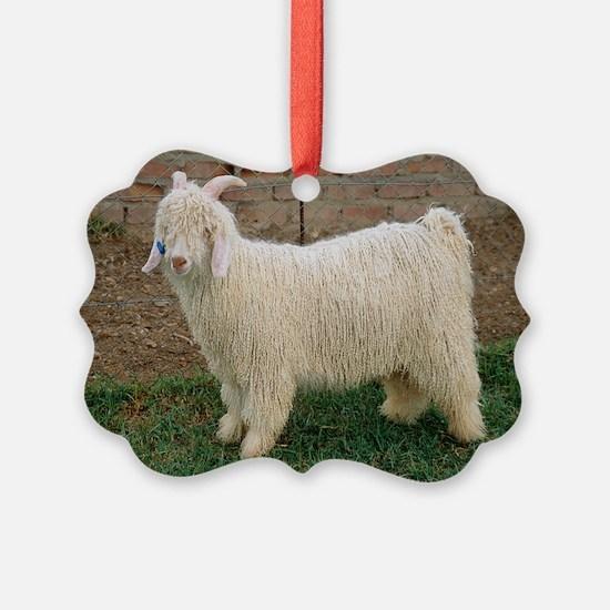 Angora goat - Ornament