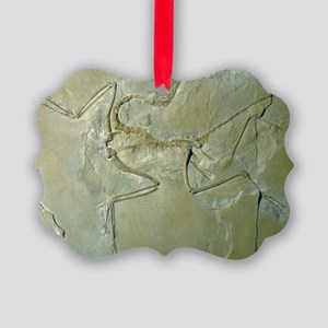 Archaeopteryx fossil - Picture Ornament