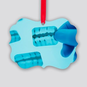 Dental X-rays - Picture Ornament