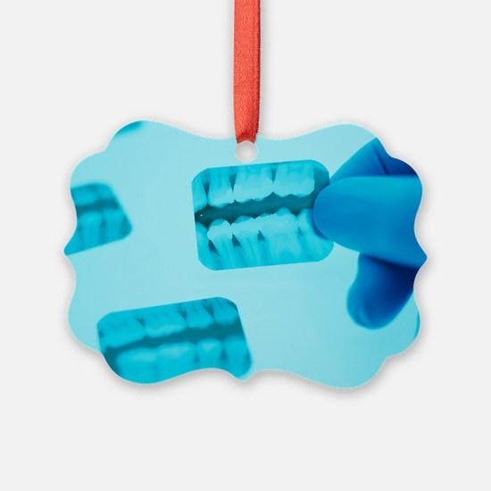 Dental X-rays - Ornament