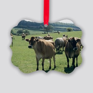 Jersey cows - Picture Ornament