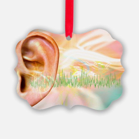 Tinnitus, conceptual artwork - Ornament