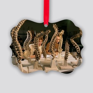 Anatomical drawing school - Picture Ornament