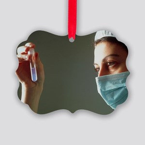 Semen sample being studied before insemination - P
