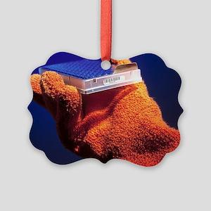 Yeast proteome - Picture Ornament