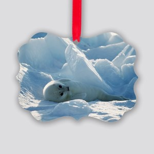 Harp seal pup - Picture Ornament