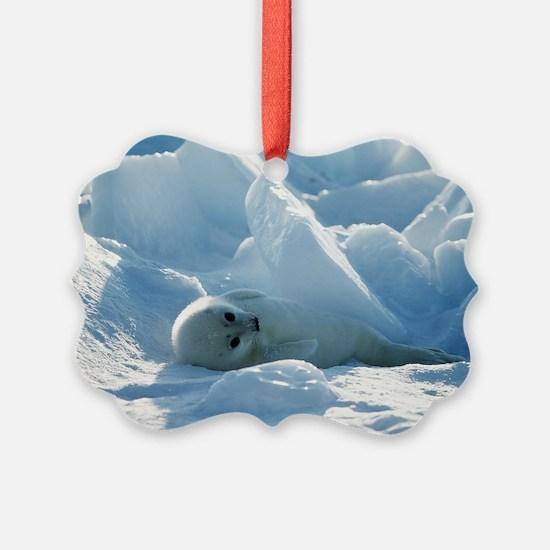 Harp seal pup - Ornament
