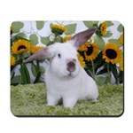 Presto with Sunflowers 2-Mousepad