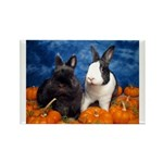 Tiny Tim and Dixie in Pumpkin Patch Rectangle Magn