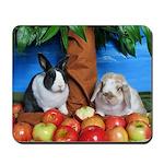 Dinah and Macintosh Picking Apples Mousepad