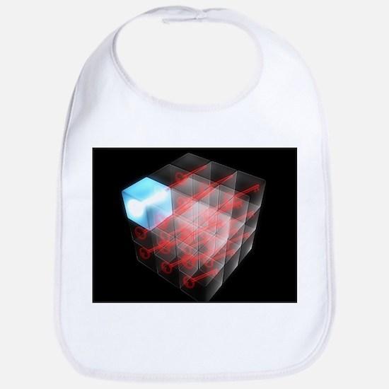 Quantum encryption, computer artwork - Bib