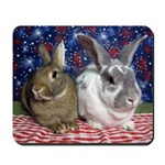 Scarlett and Emmer on 4th of July picnic Mousepad