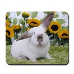 Presto with Sunflowers-1 Mousepad