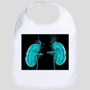 Artwork of the kidneys - Bib
