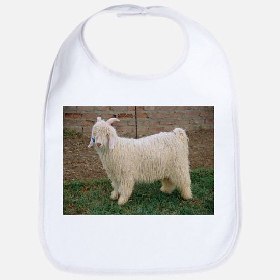 Angora goat - Bib