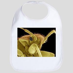 Bedbug, SEM - Bib
