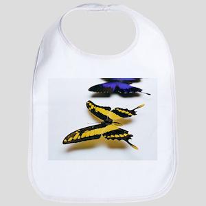 Swallowtail butterflies - Bib