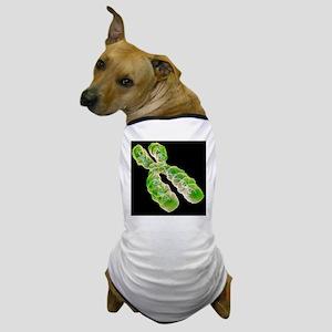 Chromosome, artwork - Dog T-Shirt