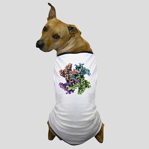 RNA processing protein, molecular model - Dog T-Sh