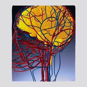 Circulatory system and brain, artwork - Stadium B