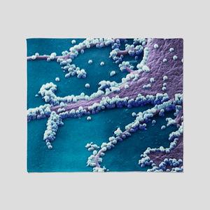 H1N1 flu virus particles, SEM - Throw Blanket