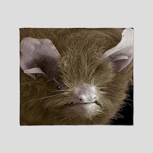 Head of a pipistrelle bat - Throw Blanket