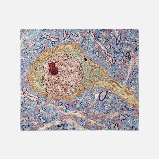 Hippocampus neuron, TEM - Throw Blanket