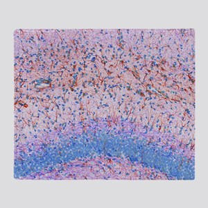 Hippocampus brain tissue - Throw Blanket