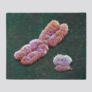 Male sex chromosomes, SEM - Throw Blanket