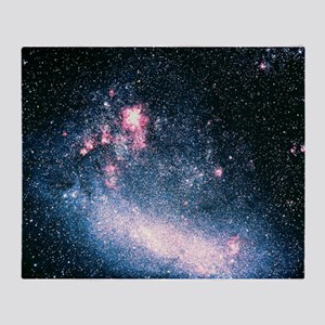 Optical image of the Large Magellanic Cloud - Sta