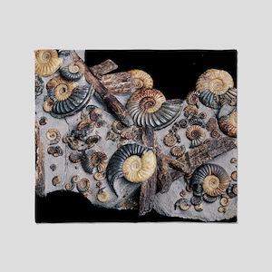 Ammonites - Throw Blanket
