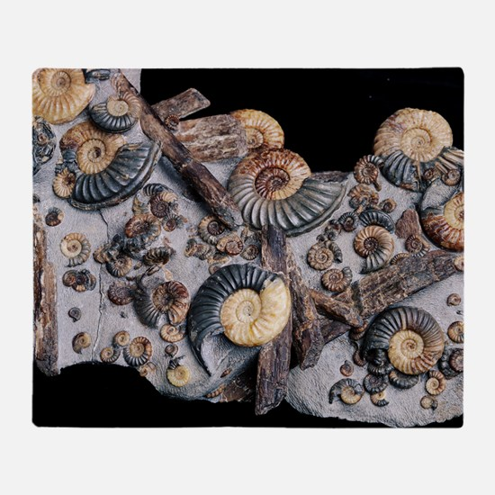 Ammonites - Throw Blanket